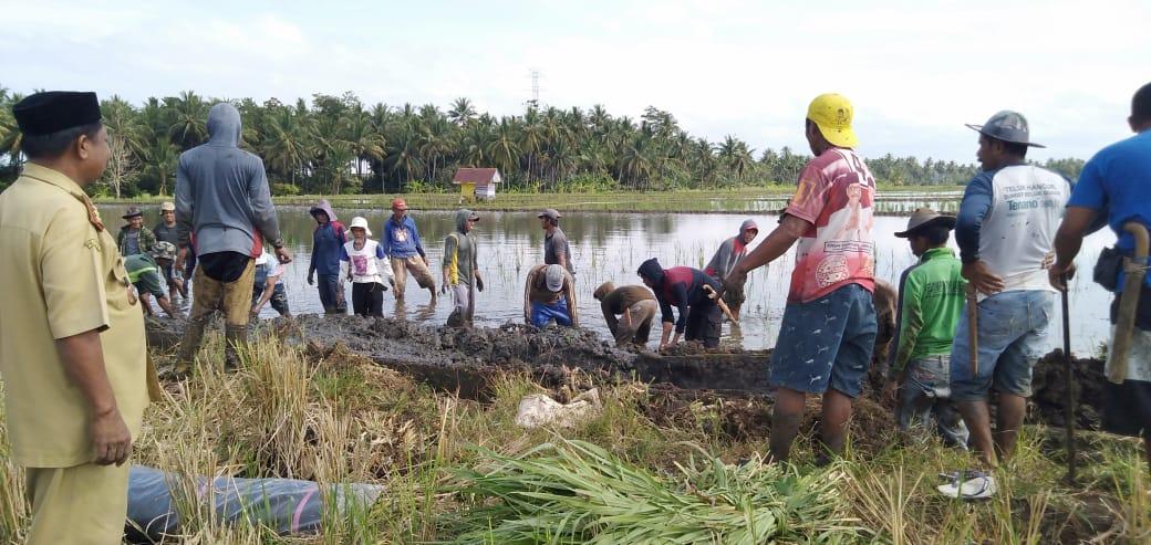 Kelompok Tani Larekkeng Kelurahan JennaE Gotong Royong Bersihkan Saluran Irigasi