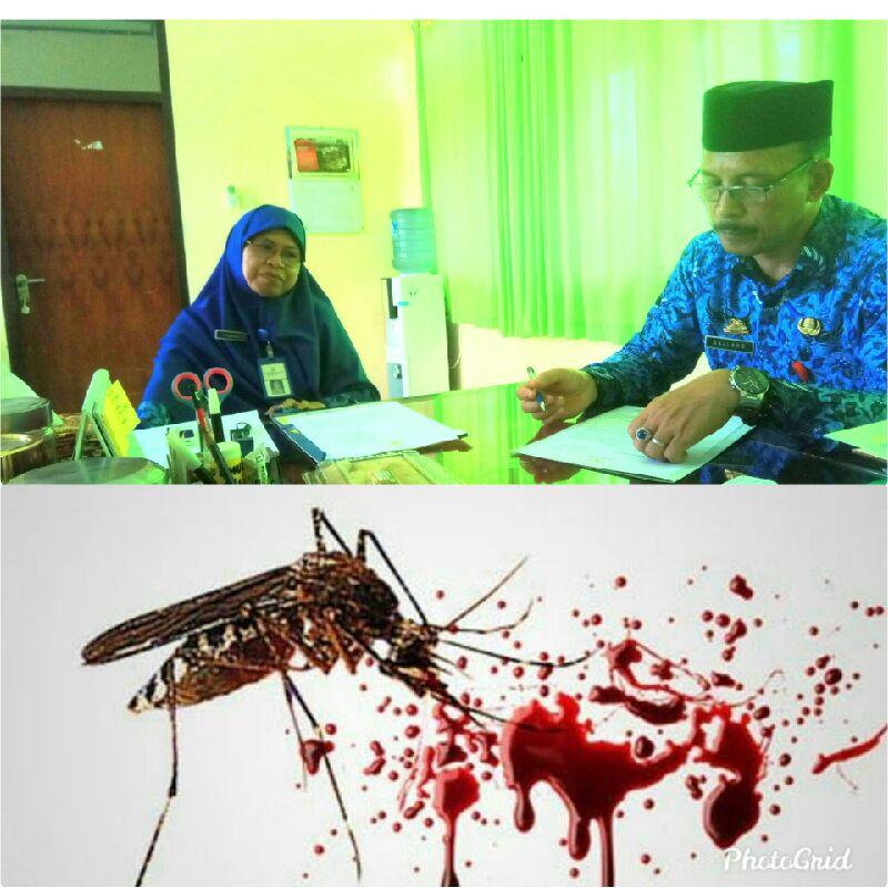 Penderita DBD Di Soppeng Meningkat,Dinkes Himbau Warga Lakukan PSN